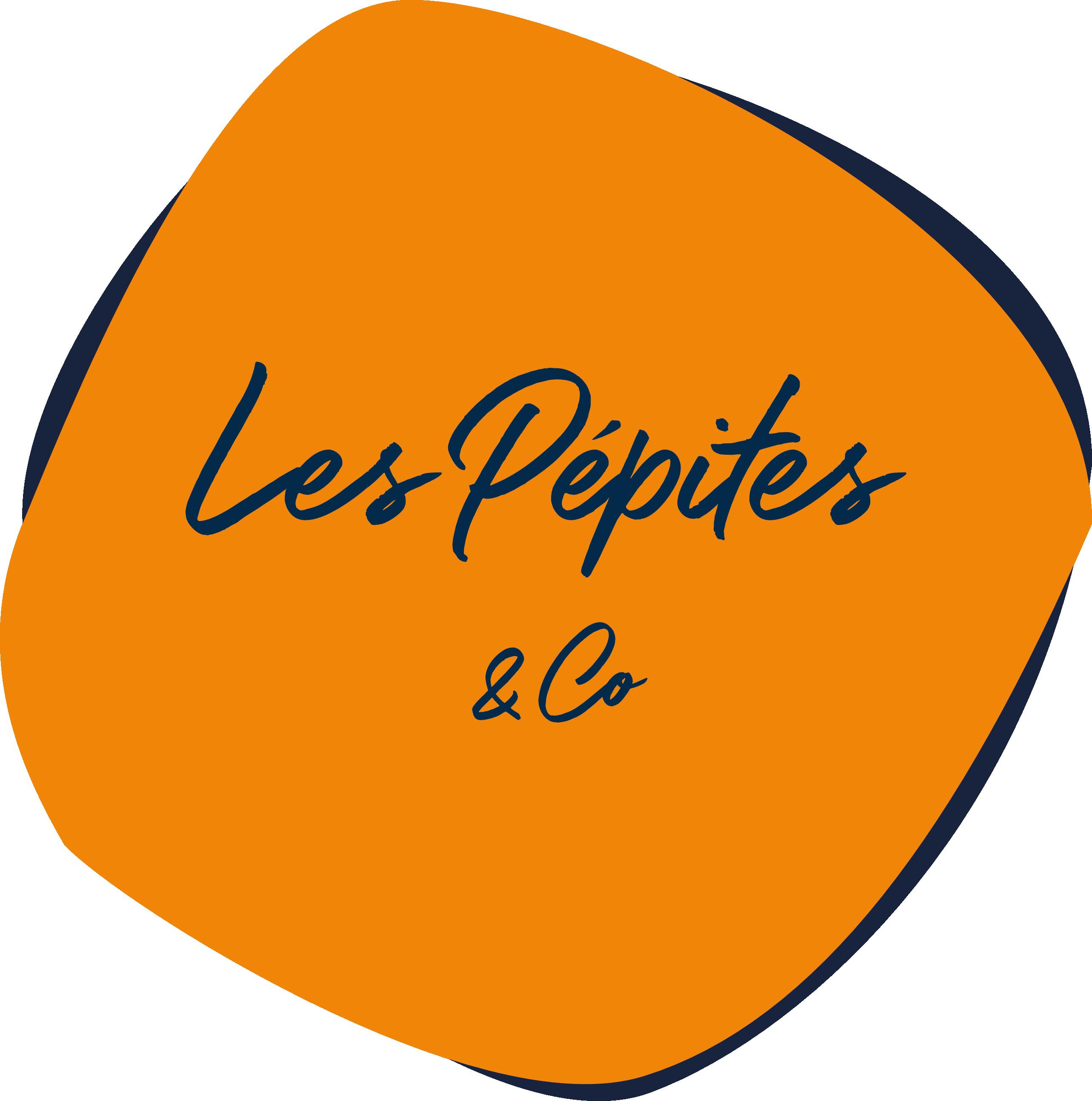 Les Pépites & Co - Agence de Communication Lyon